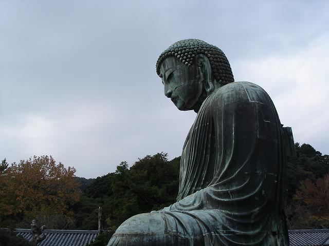 鎌倉大仏の横顔
