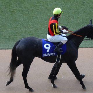 中山競馬場で開催された、2020年第65回有馬記念(グランプリ)を勝ったクロノジェネシス