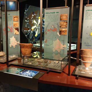 松戸市立博物館の土器の展示