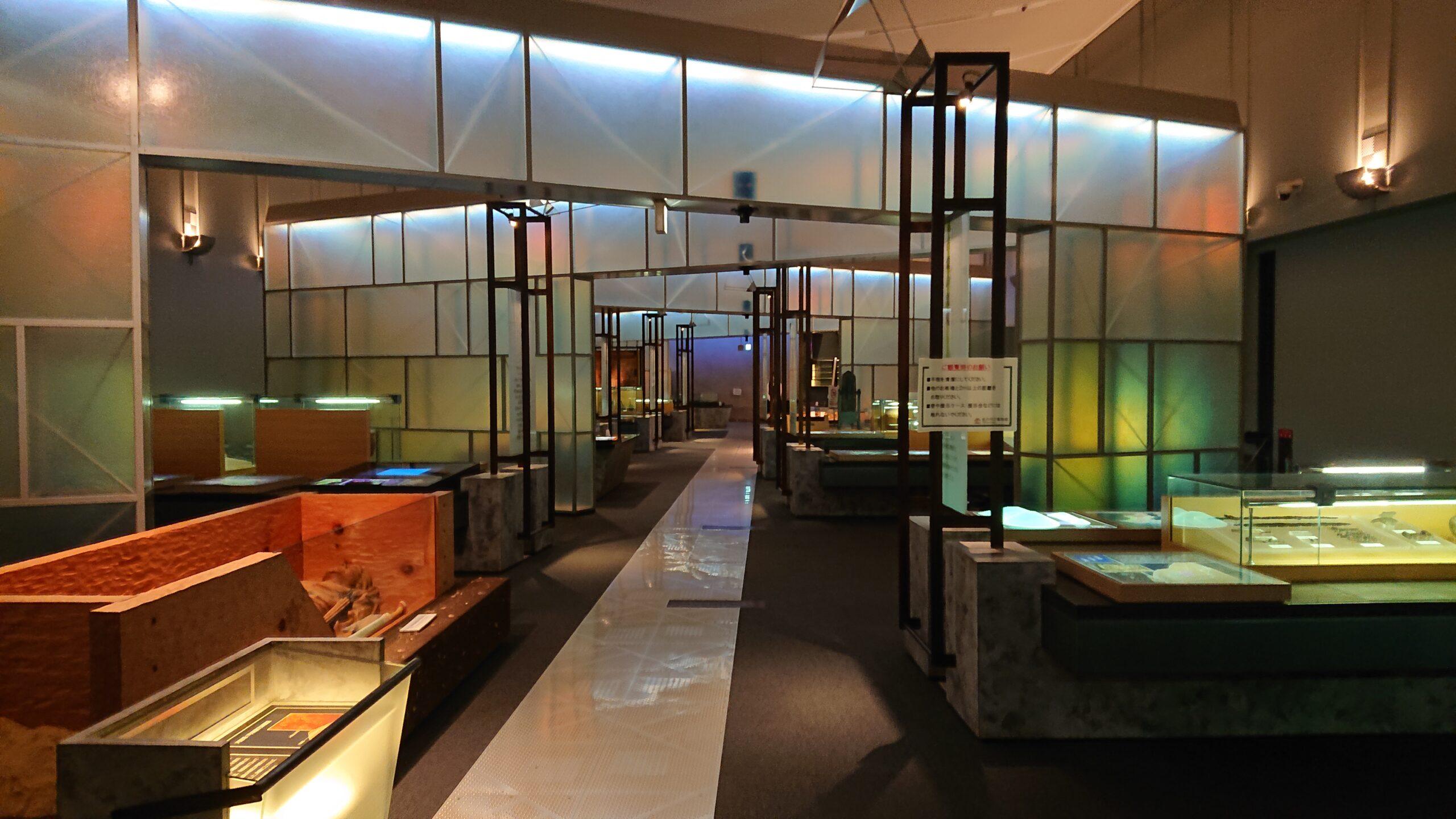 松戸市立博物館の展示