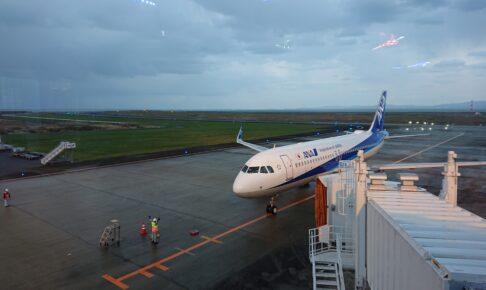 徳島阿波踊り空港の展望ホールから全日空機の到着をみる