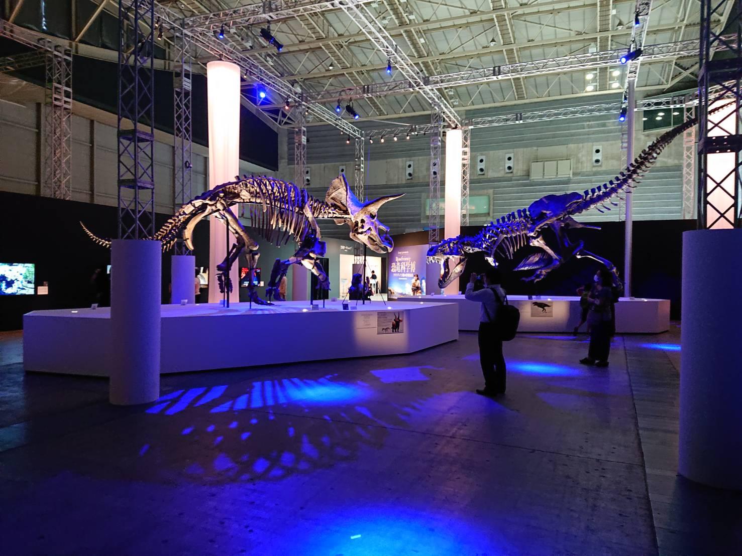 恐竜科学博のナイトミュージアムの照明